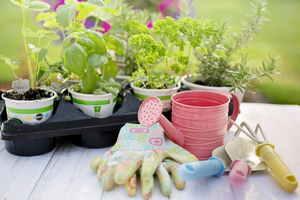 Kertészkedés-Testi-Lelki egyensúly